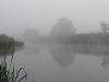 Обои Речной туман