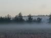 Обои Туманное утро